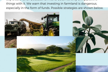Farmland - A Good Investment, but only under certain conditions Infographic