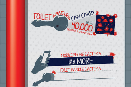 Fascinating Facts about the Flushable Toilet  Infographic