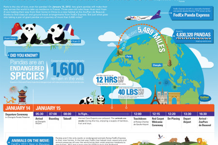 FedEx Panda Express from China to France Infographic