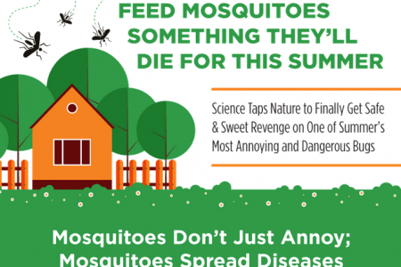 Feed Mosquitoes Something They'll Die For this Summer Infographic