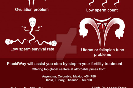 Fertility Treatment Abroad Infographic