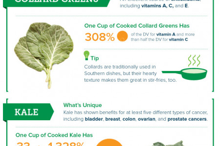 Field Guide to Leafy Greens Infographic