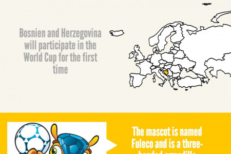 FIFA World Cup 14 Infographic