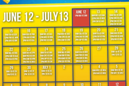 fifa worldcup 2014 schedule and streaming details online Infographic