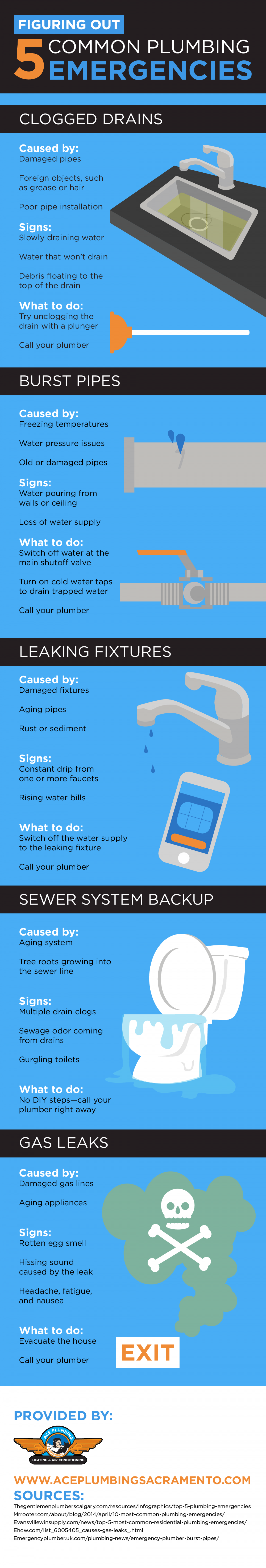 Figuring Out 5 Common Plumbing Emergencies Infographic