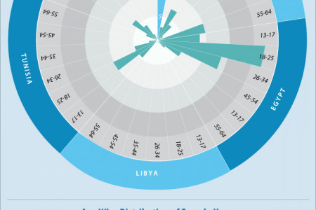 FilSekka | Facebook User Distribution in North Africa Infographic