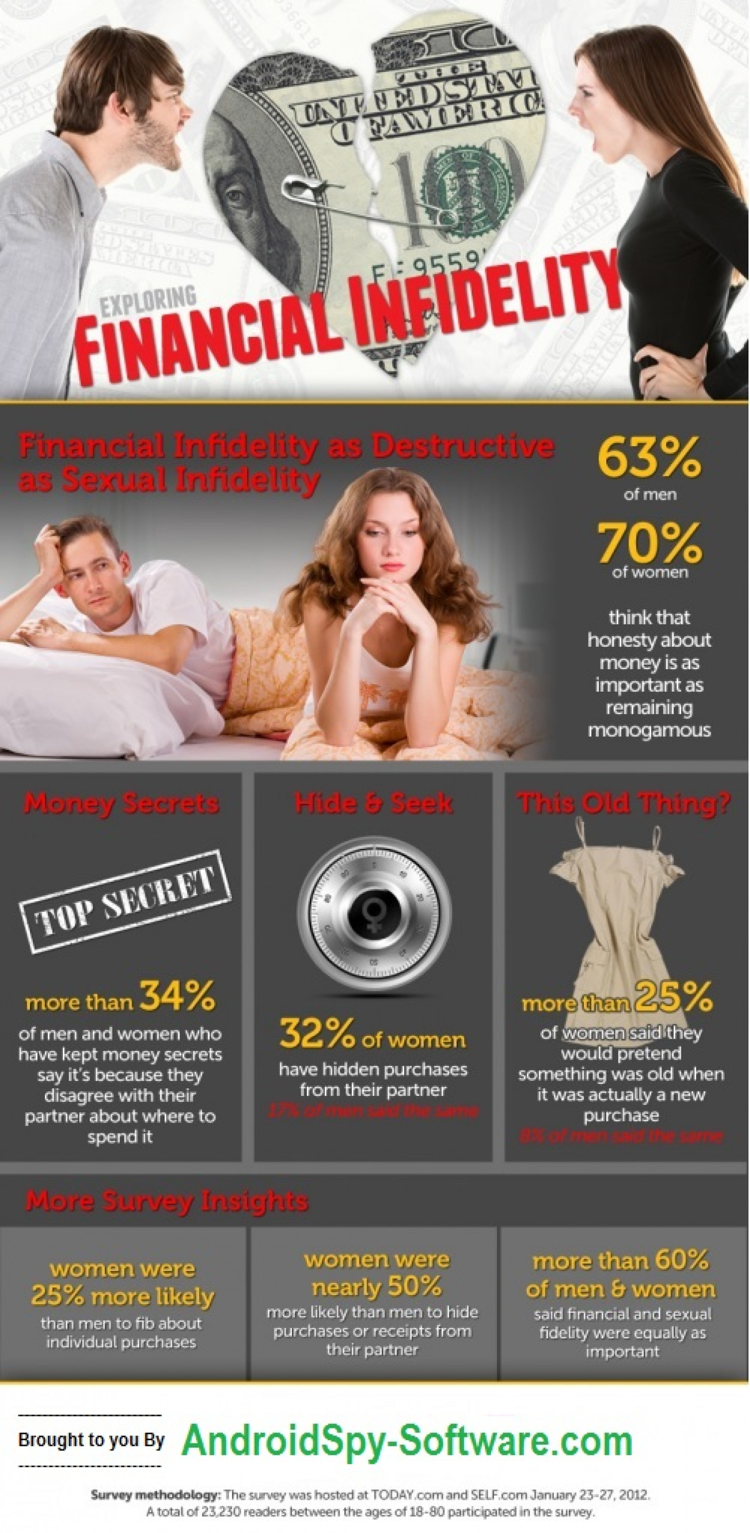 Finanacial Infidelity and It's Remedy Infographic