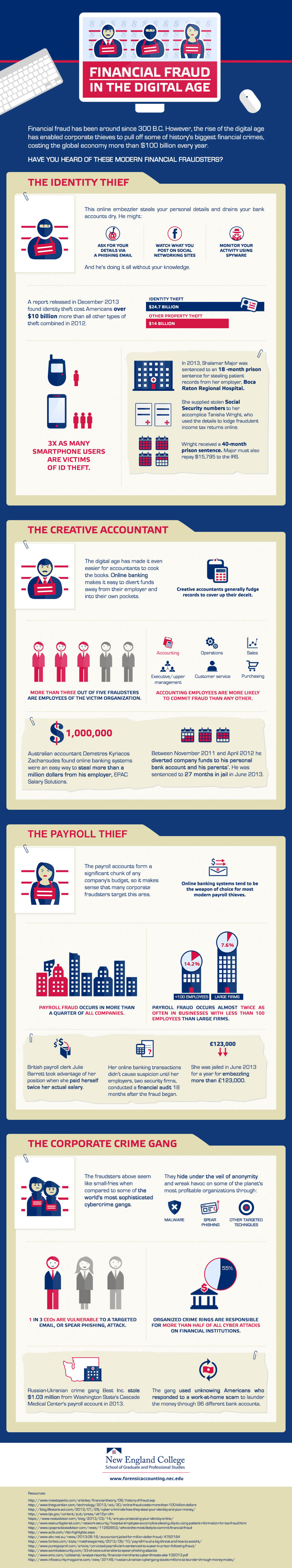 Financial Fraud in the Digital Age Infographic