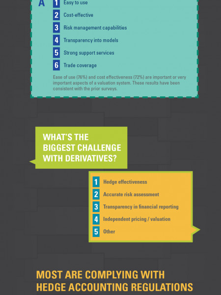 FINCAD 2012 Corporate Survey Infographic