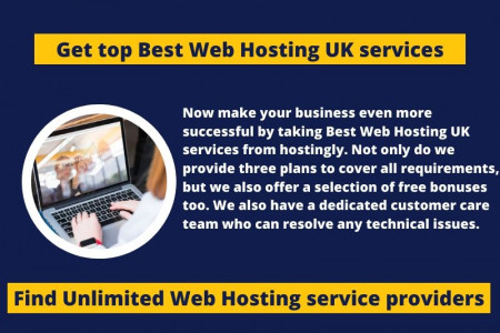 Find professional web hosting service providers - Hostingly Infographic