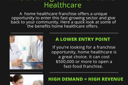 Find The Growing Desire For Senior Home Care Franchise Business Infographic