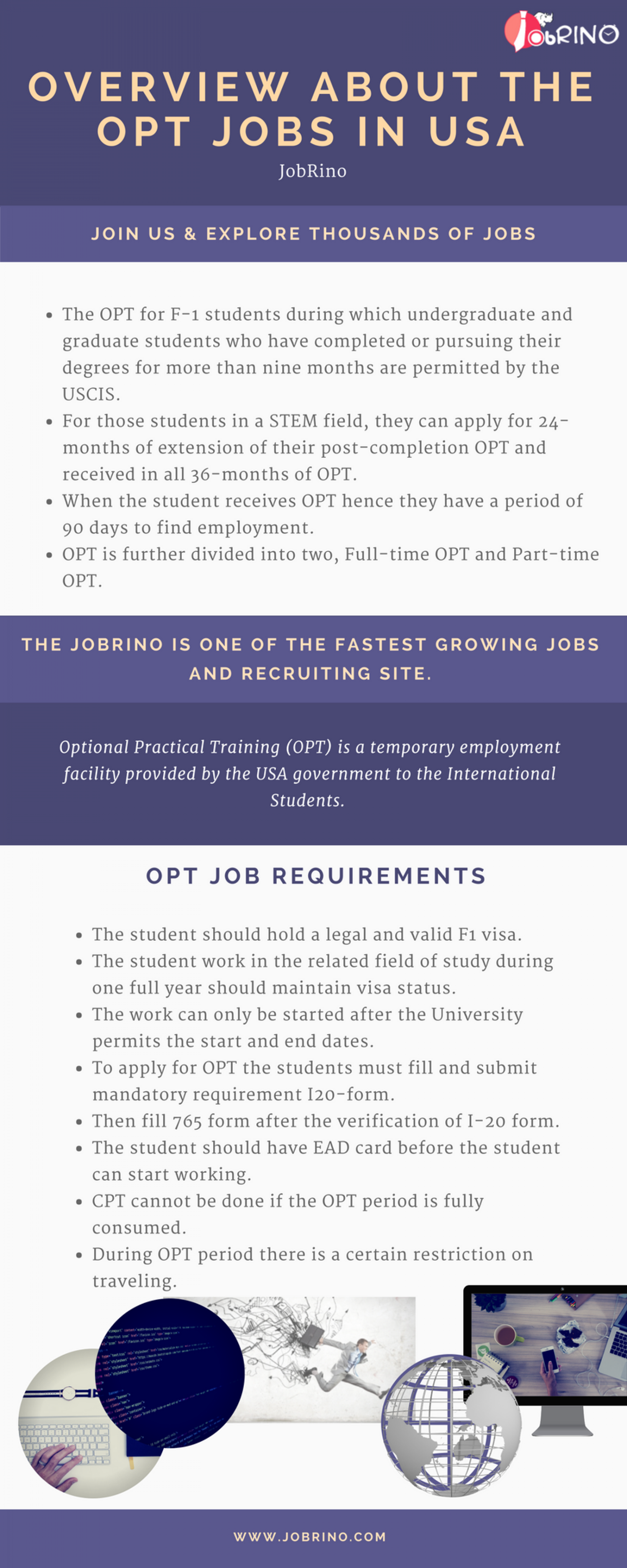 Find the overview of the opt jobs in USA - JobRino Infographic