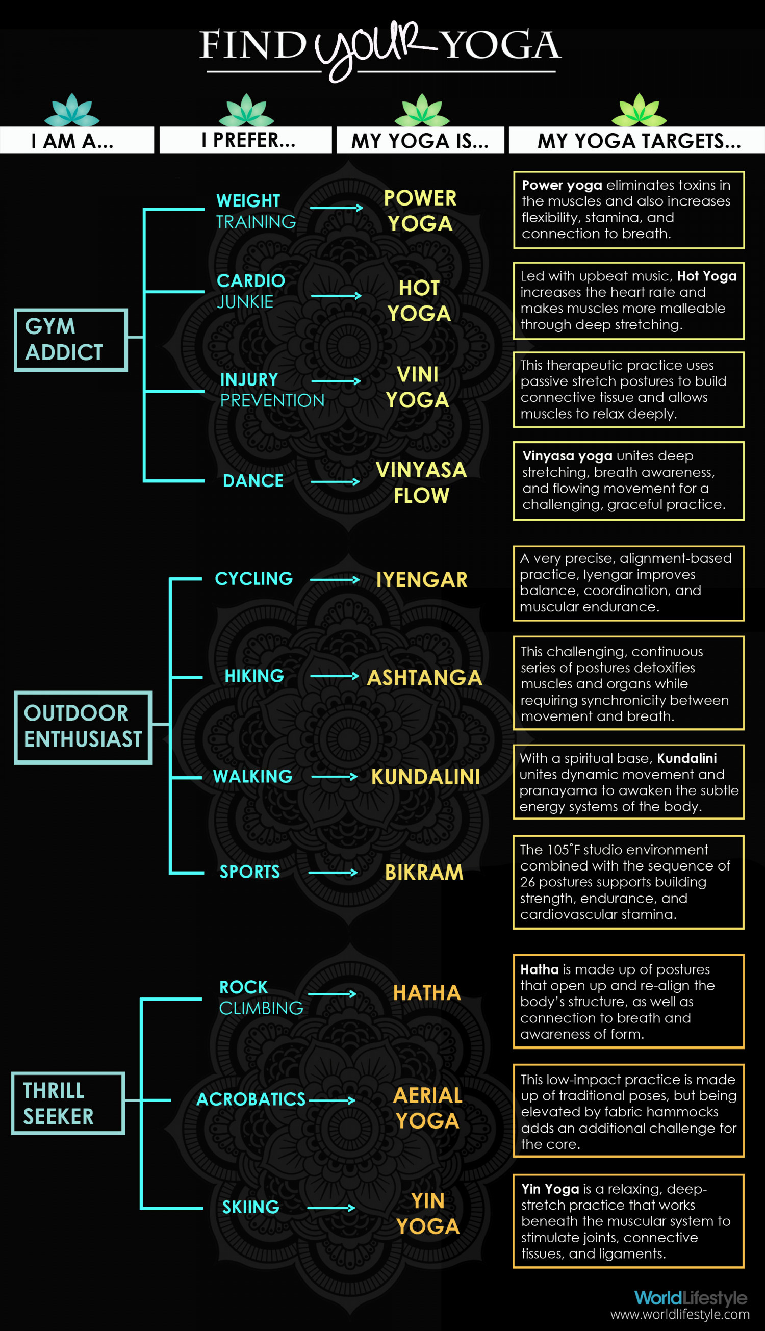 Find Your Yoga  Infographic
