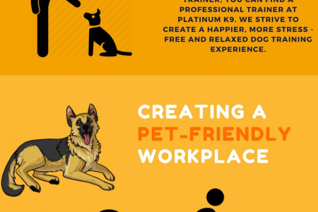 Finding Qualified Behaviour Training For Dog Infographic