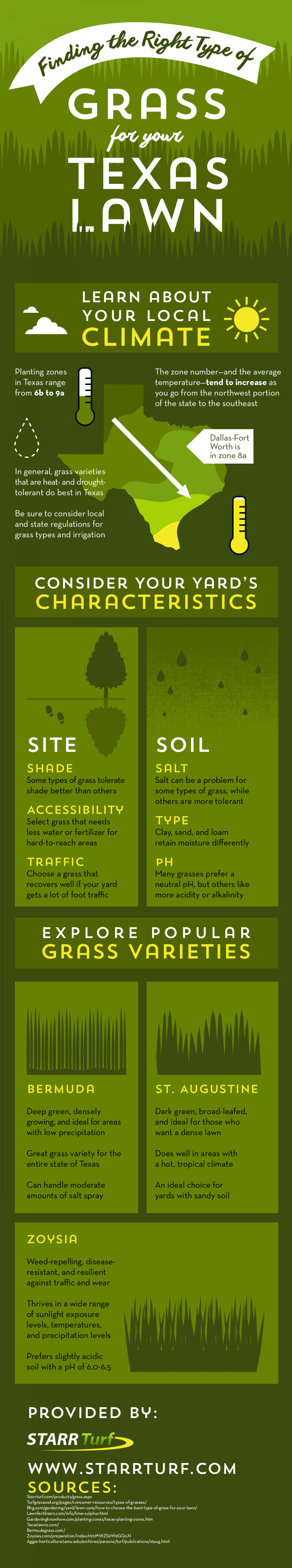 Finding the Right Type of Grass for Your Texas Lawn Infographic