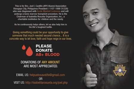 Fine Arts Fundraising Campaign for leukemia patient Philippines Infographic
