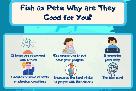 Fish as Pets: Why are They Good for You? Infographic