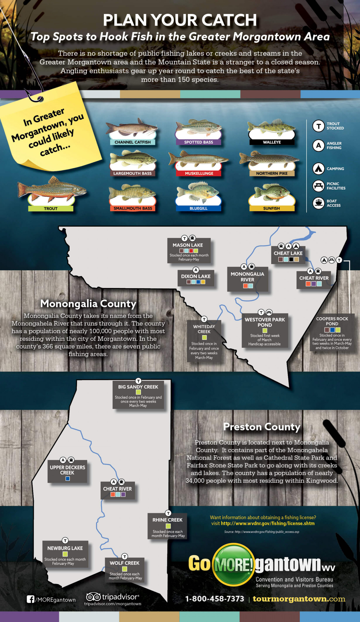 Fishing in Morgantown, WV Infographic