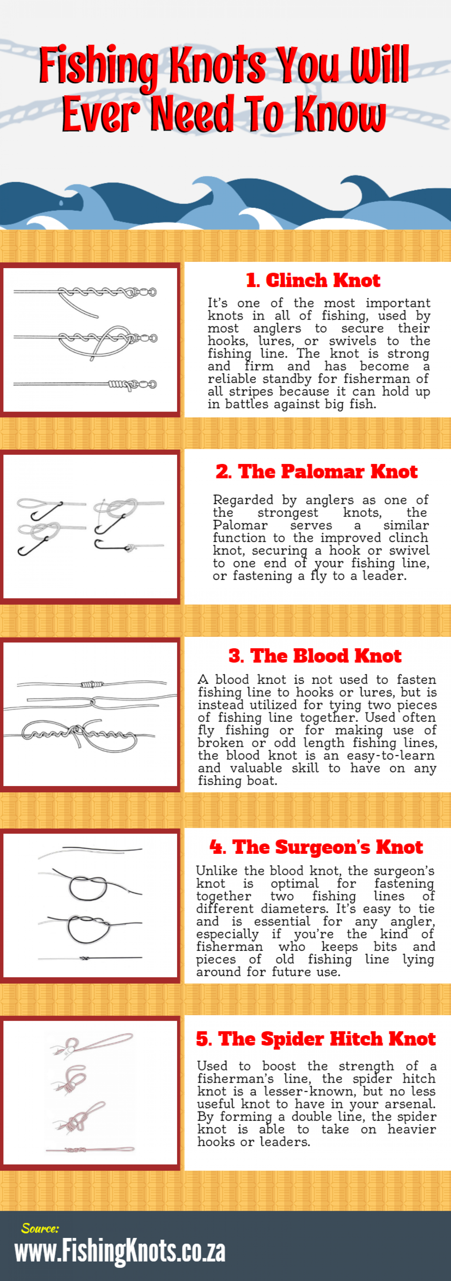 Fishing Knots You Will Ever Need To Know Infographic