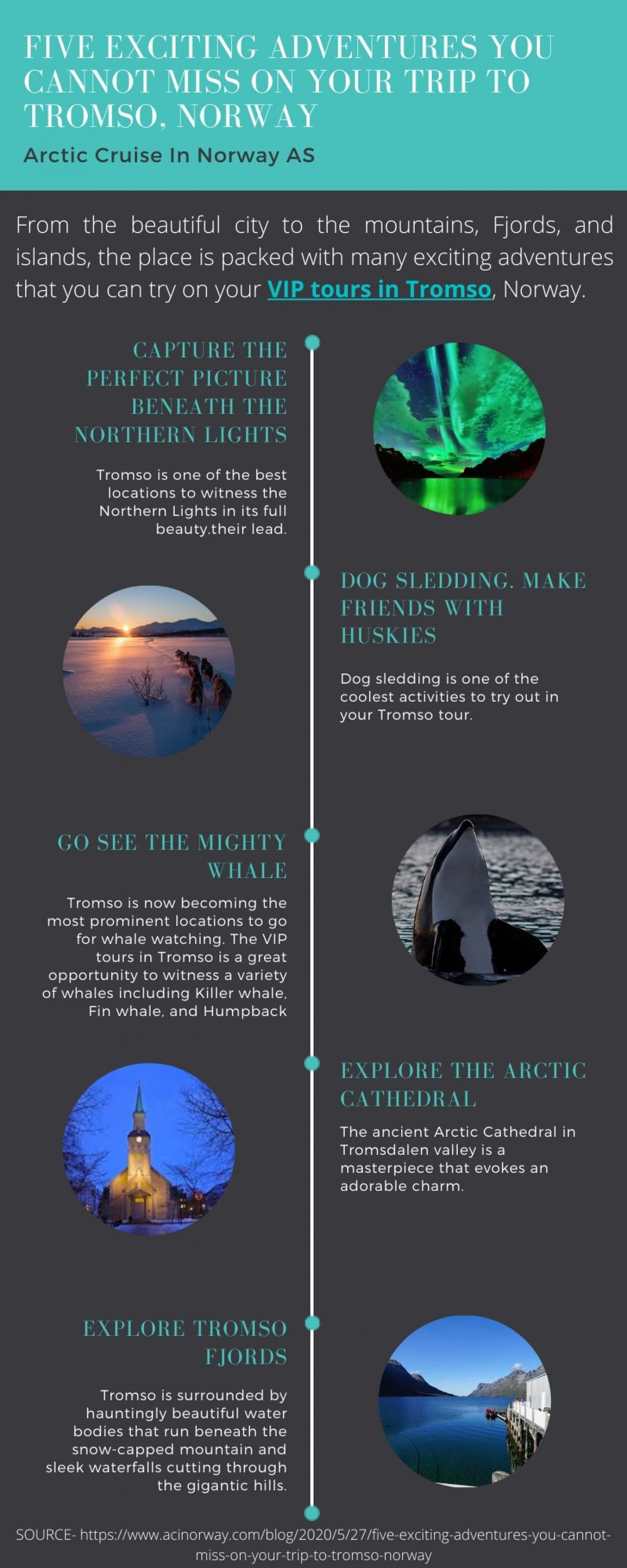 Five Exciting Adventures you cannot Miss on Your Trip to Tromso, Norway Infographic