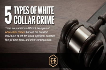 Five Types of White Collar Crime Infographic