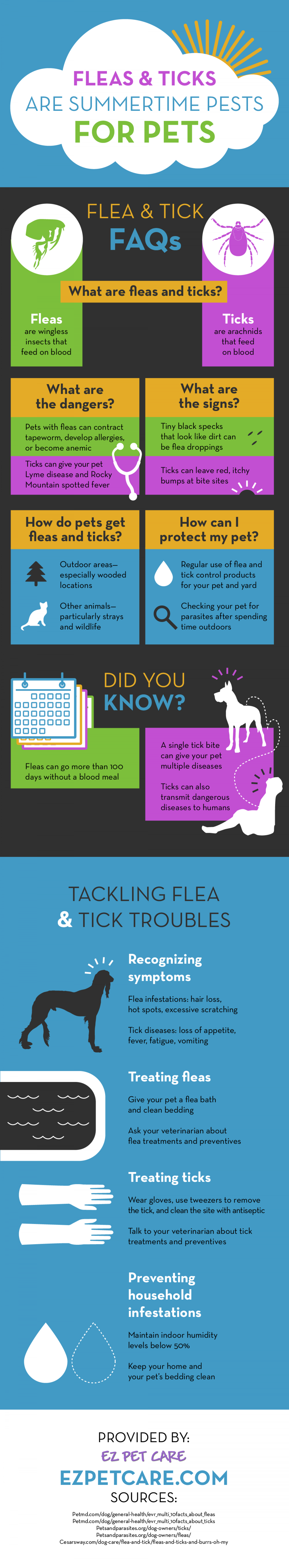 Fleas and Ticks Are Summertime Pests for Pets Infographic