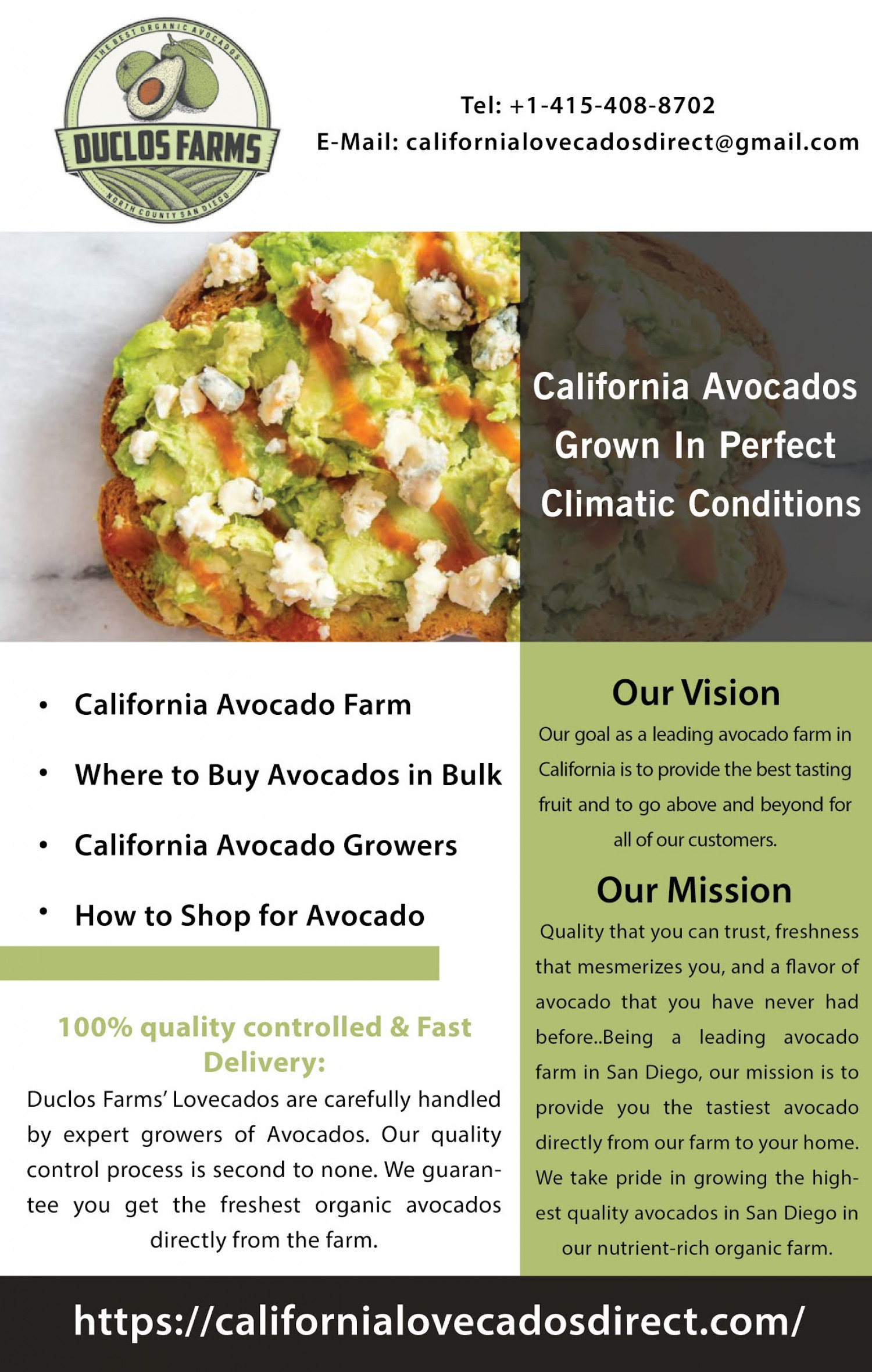 Florida Best Avocado Growers  Infographic