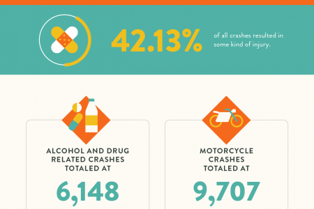 Florida Car Crash Statistics Infographic
