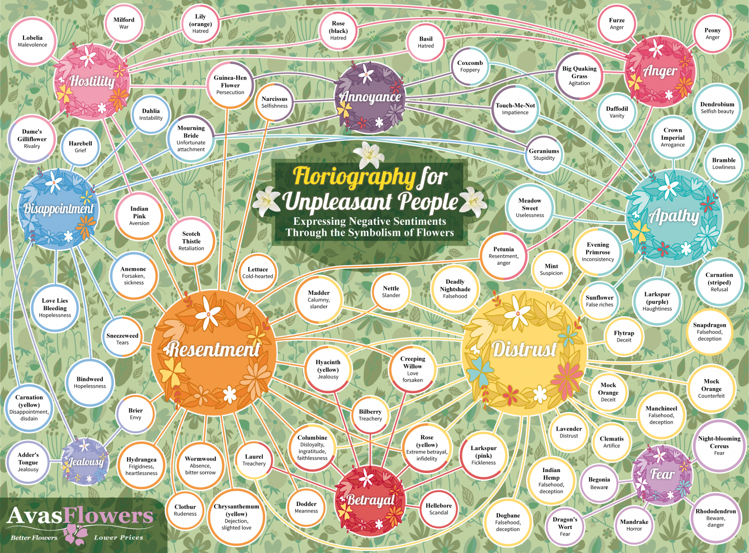 Floriography for Unpleasant People Infographic