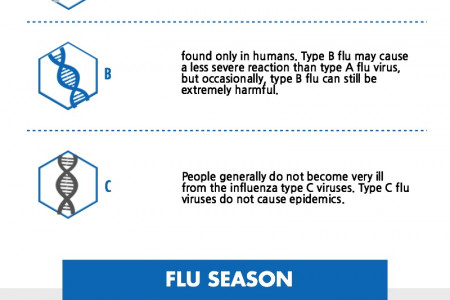 Flu Season Infographic