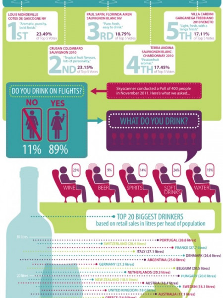 Flying Wines  Infographic