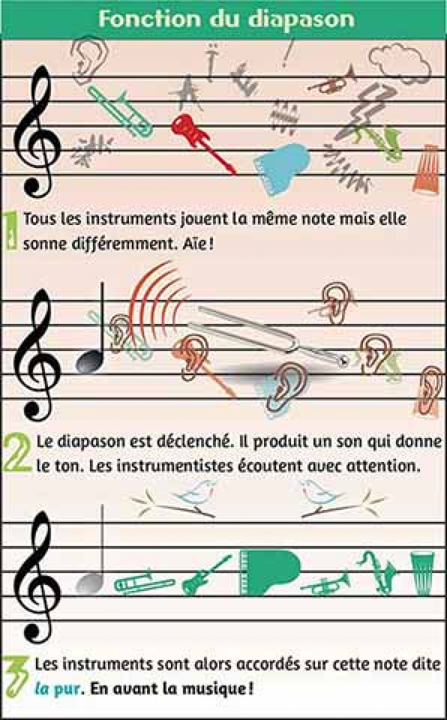 Fonction du diapason/What is the tuning fork for? Infographic