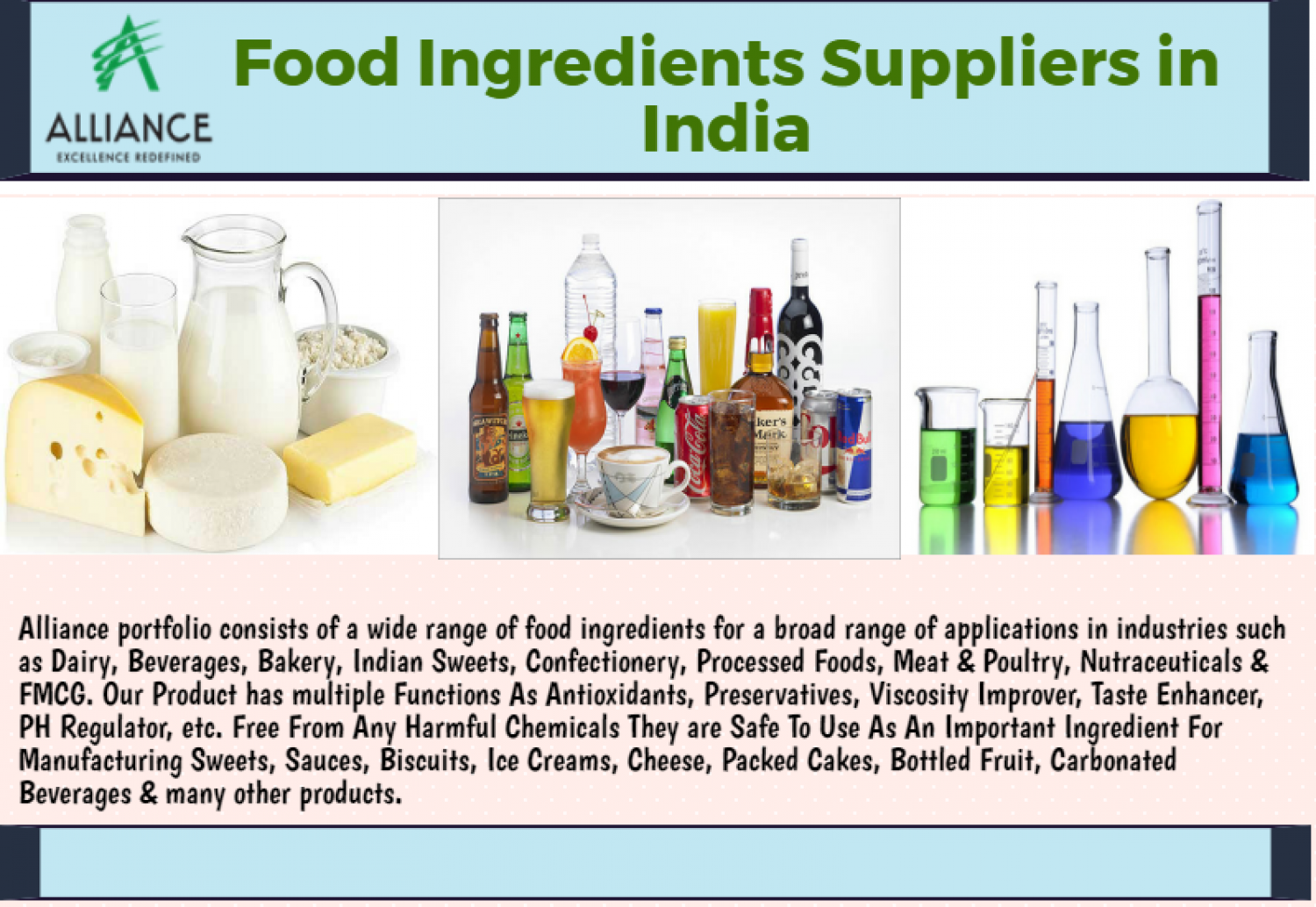 Food Ingredients Suppliers in India  Infographic