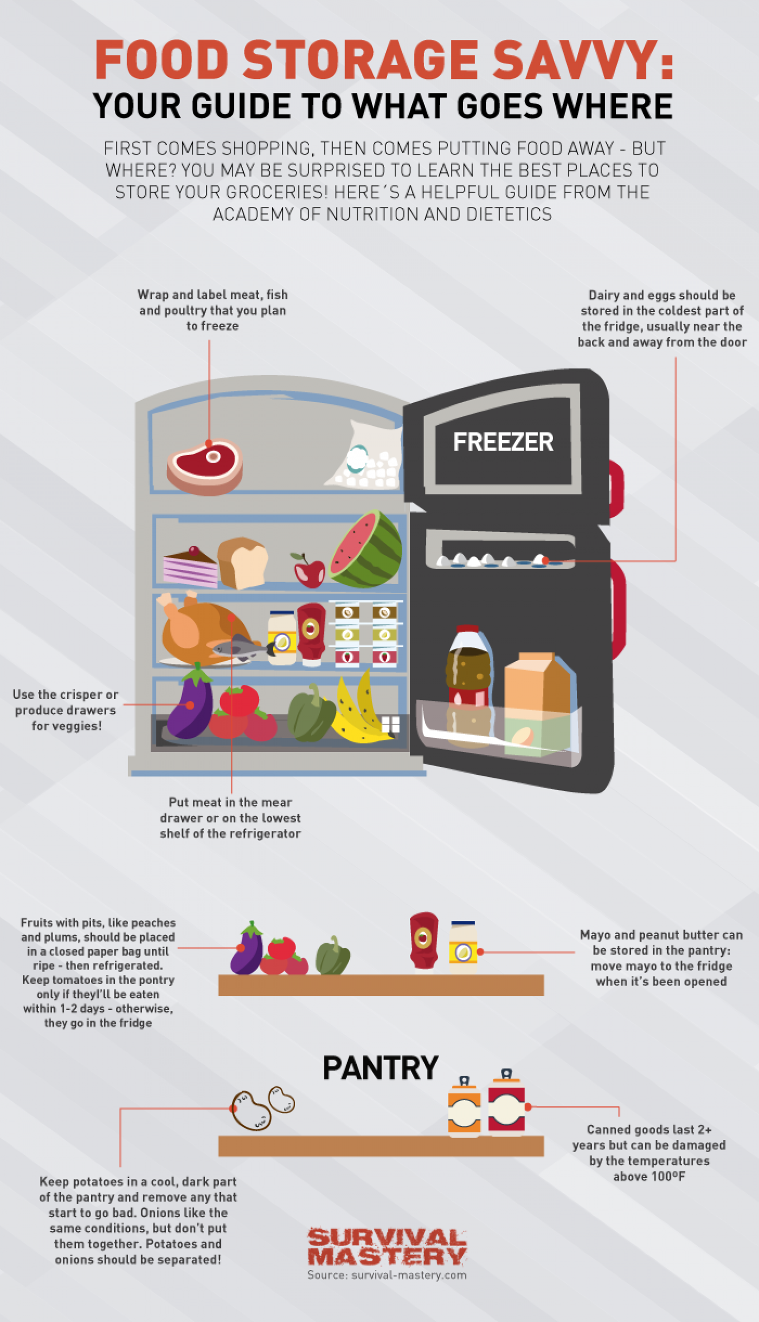 Food Storage Savvy Infographic Infographic