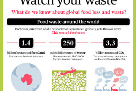 Food Waste: The Negative Stats Infographic