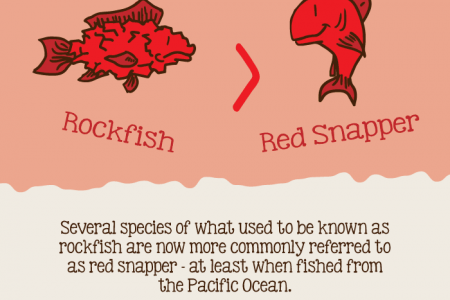 Foods That Have Been Renamed Infographic