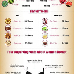 breast size fruit chart: Bra size chart compared to fruit sizing sweet nothings nyc