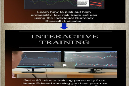 Forex Trading Education Infographic