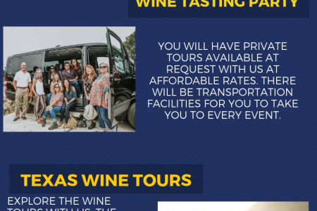 Fredericksburg Texas Wine Tours Infographic
