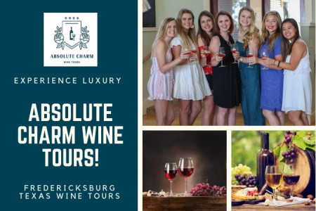 Fredericksburg Winery Tour Infographic
