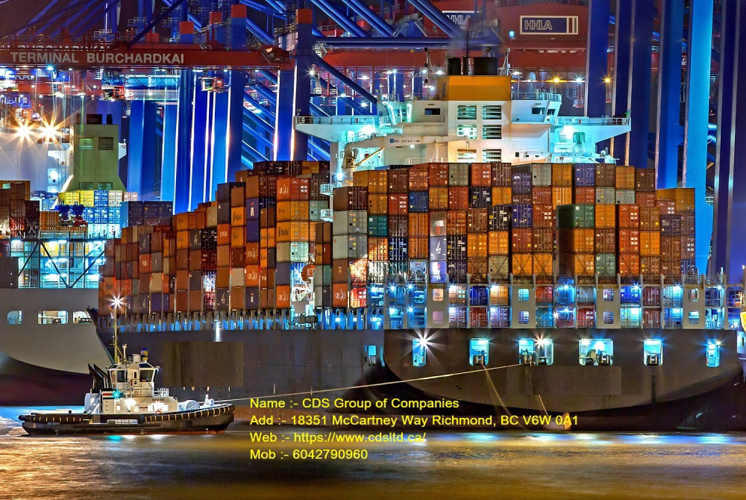 Freight Forwarding Companies | Supply Chain Management in Canada Infographic