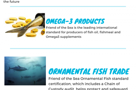Friend of the sea Certifications. Infographic