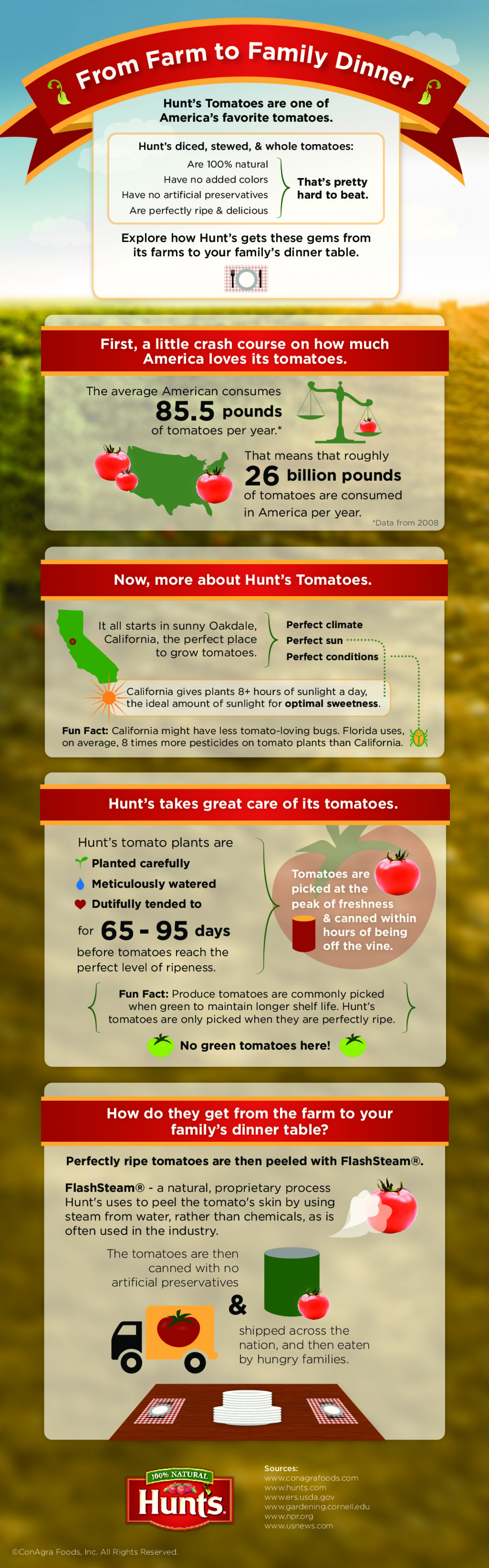 From Farm to Family Dinner Infographic