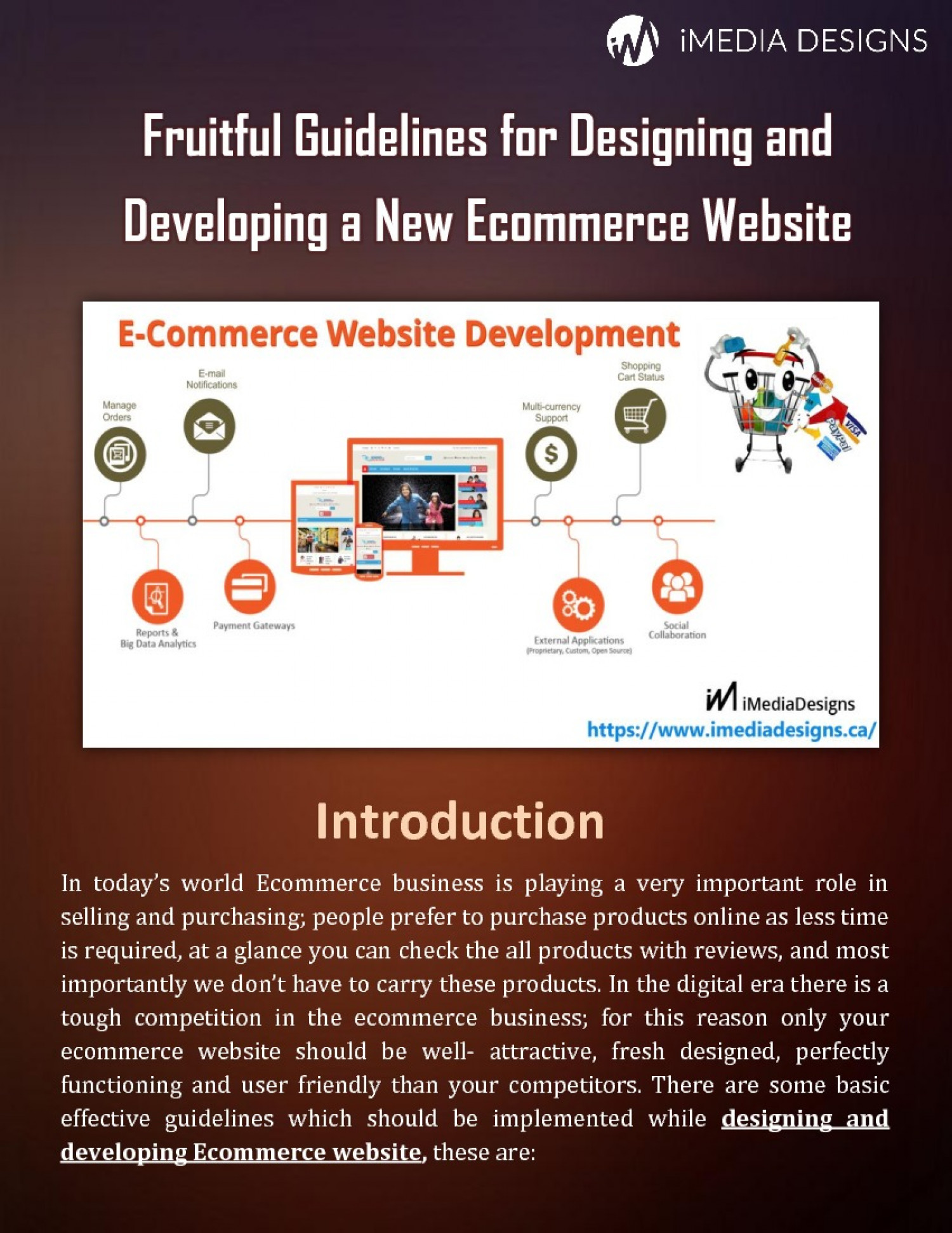 Fruitful Guidelines for Designing and Developing a New Ecommerce Website Infographic