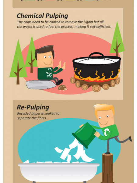 FSC Vs Recycled Paper – The benefits for your business Infographic