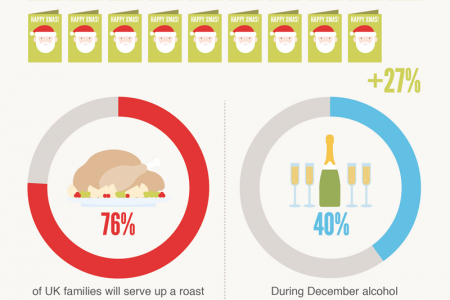 Fun and Festive Facts 2013 Infographic