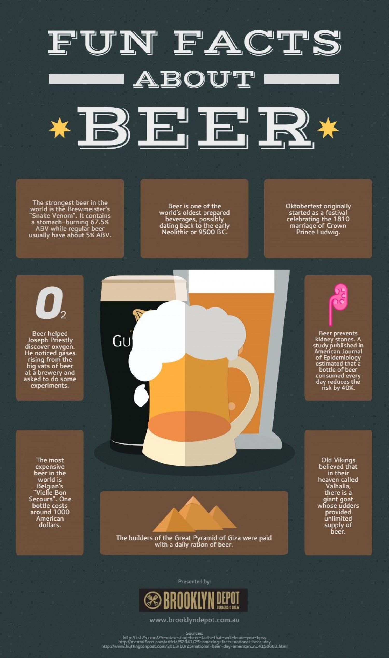 Fun Facts About Beer Infographic