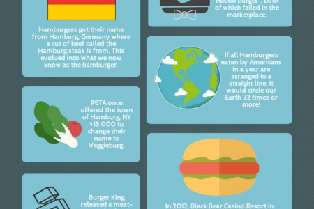 Fun Facts About Burgers Infographic