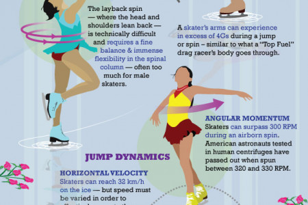 Fun Facts About Figure Skating Infographic