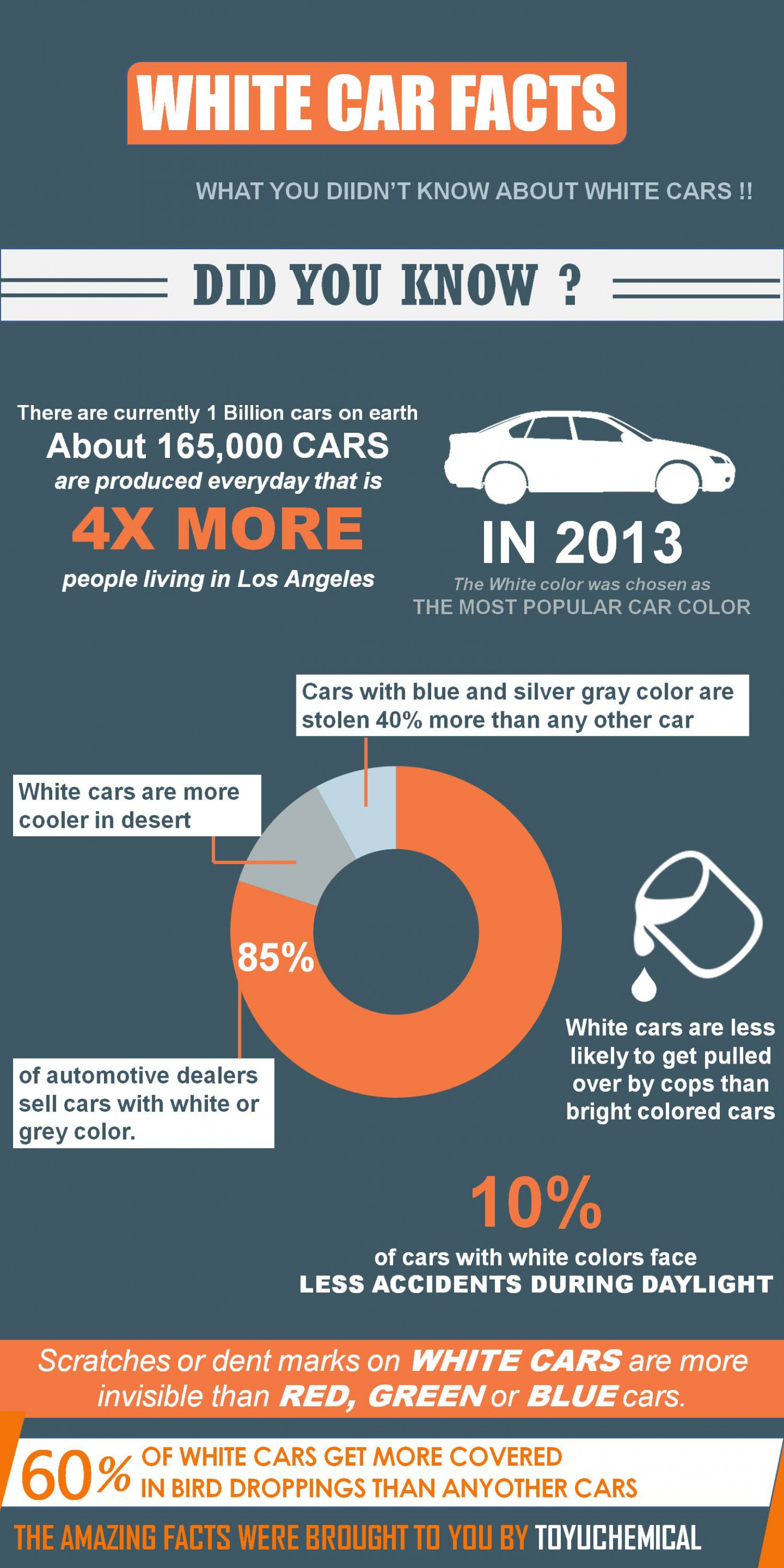 FUN FACTS ABOUT WHITE CARS Infographic